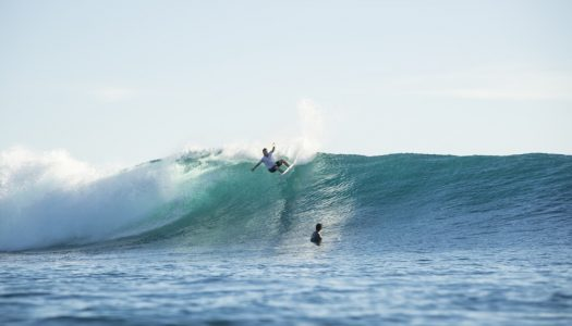 DHD Mick Fanning DNA Round Tail